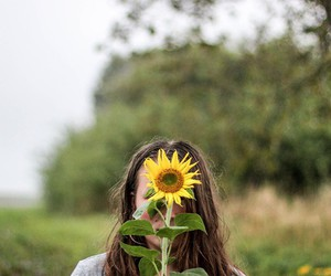 girl, nature, and sunflower image