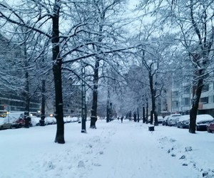 christmas, finland, and winter image