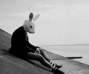 rabbit, alone, and black and white image