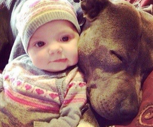 dog and baby image