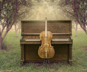 forest, music, and cello image