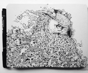 drawing, art, and owl image