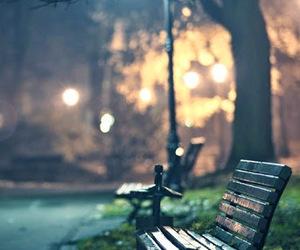 light, night, and park image