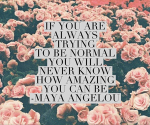 quote, amazing, and flowers image