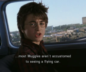 harry potter, quotes, and muggles image
