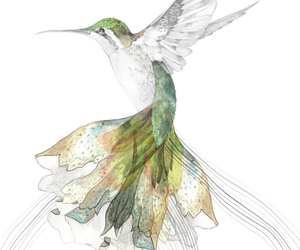 bird, art, and illustration image