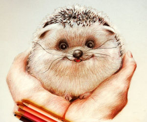 drawing, art, and hedgehog image