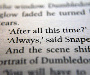 harry potter, potter, and quote image