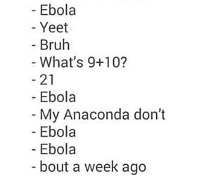 lol, bruh, and ebola image