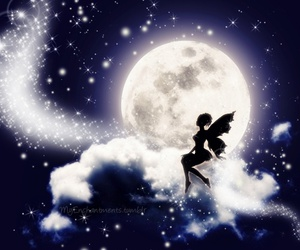fairy in the moonlight image