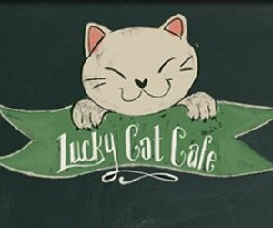 cafe, cat, and concept art image