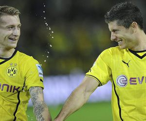 borussia dortmund, bvb, and robert lewandowski image