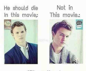 tfios, divergent, and augustus waters image