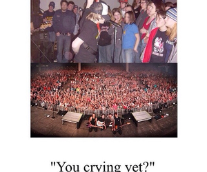 fall out boy, FOB, and love them image