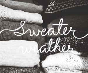 sweater, fall, and sweater weather image