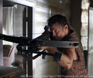 crossbow, the walking dead, and daryl image