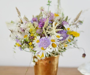 flowers and herbs image