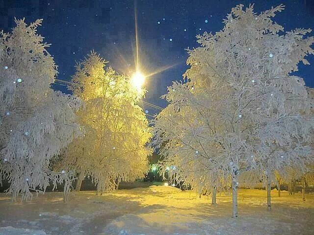 beautiful, snow, and star image