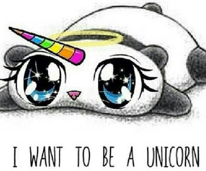 unicorn and panda image