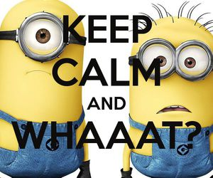 minions, keep calm, and yellow image