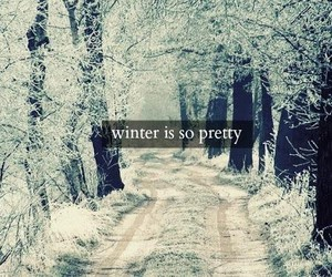 winter, snow, and pretty image