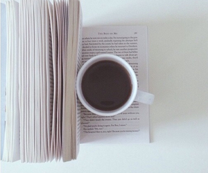 book and cold image