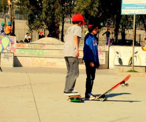 skaters image