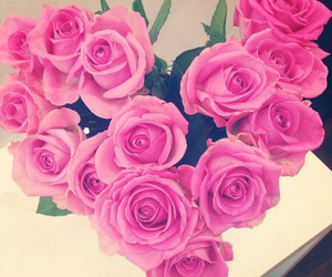 flowers, g, and pink rose image