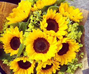 for you, love, and sunflowers image