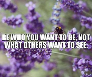 bee, quote, and quotes image