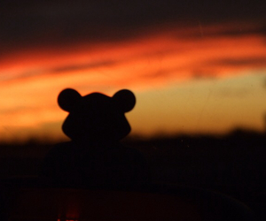 sonnenuntergang, sweet, and teddy image