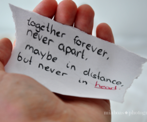 quote, distance, and forever image