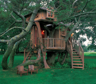 tree, tree house, and house image