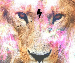 galaxy, lion, and picture image