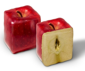 apple, fruit, and square image