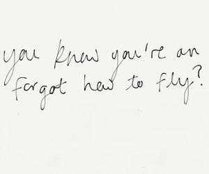 angel, quotes, and fly image