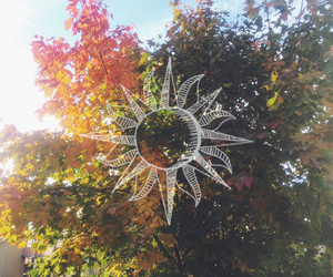 sun, autumn, and hipster image