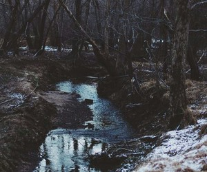 nature, river, and tree image