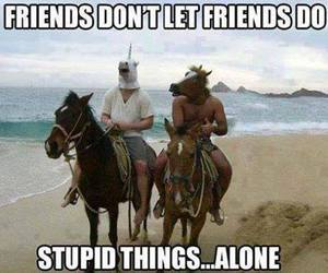 friends, funny, and horse image