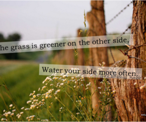 fence, grass, and life quote image