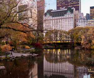 architecture, autumn, and Central Park image
