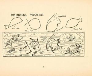 vintage, tank fish, and curious fishes image