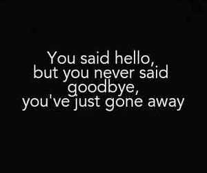 hello, gone, and goodbye image