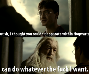 harry potter, dumbledore, and funny image