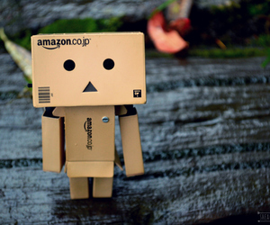 adorable, danbo, and danboard image