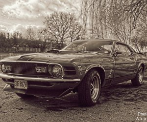 car and ford mustang. image
