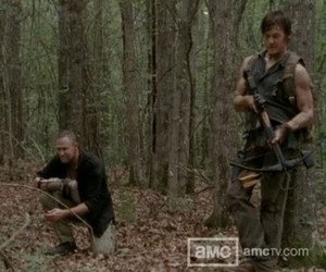 brothers, forest, and merle image