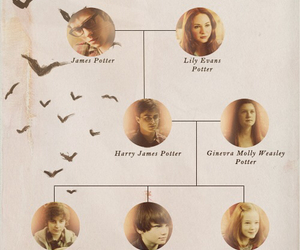 harry potter, family, and potter image