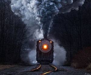 foret, locomotive, and train image