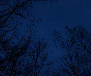 night, sky, and blue image